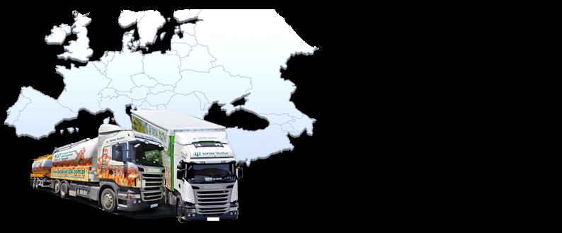 Nous avons notre propre flotte de camions pour le transport de granulés prêts à les coins les plus reculés de l'Europe. Nous exécutons les ordres rapidement et à temps livraison garantie!